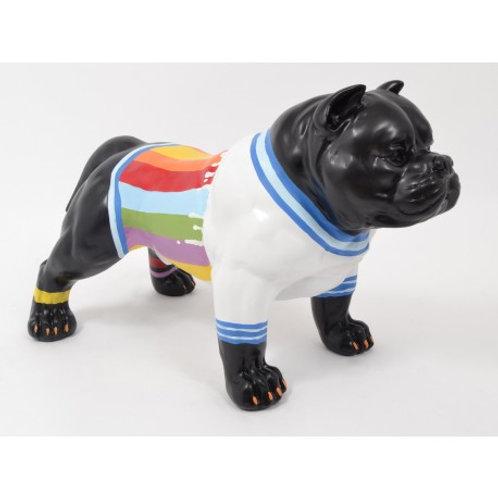 "Funny Dog ""RAINBOW"""