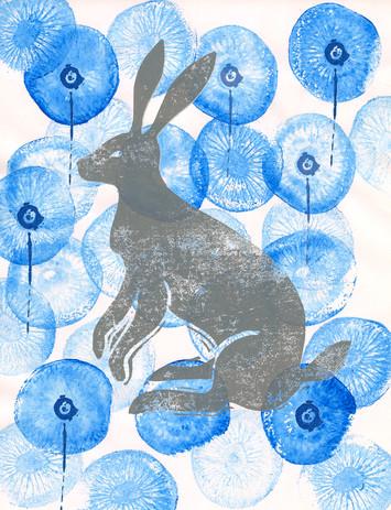 kiwi+rabbit  copy.jpg