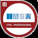 IASA CITA Certified IT Architect Professional