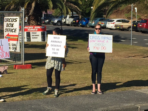 Protest against the use of wild animals in circuses