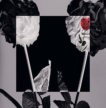 VISCUS album cover