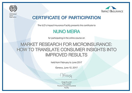 Certificate Market Research ILO NUNO MEI
