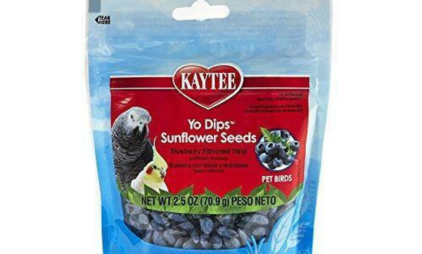 YO DIP BLUE BERRY COVERED SUNFLOWERS