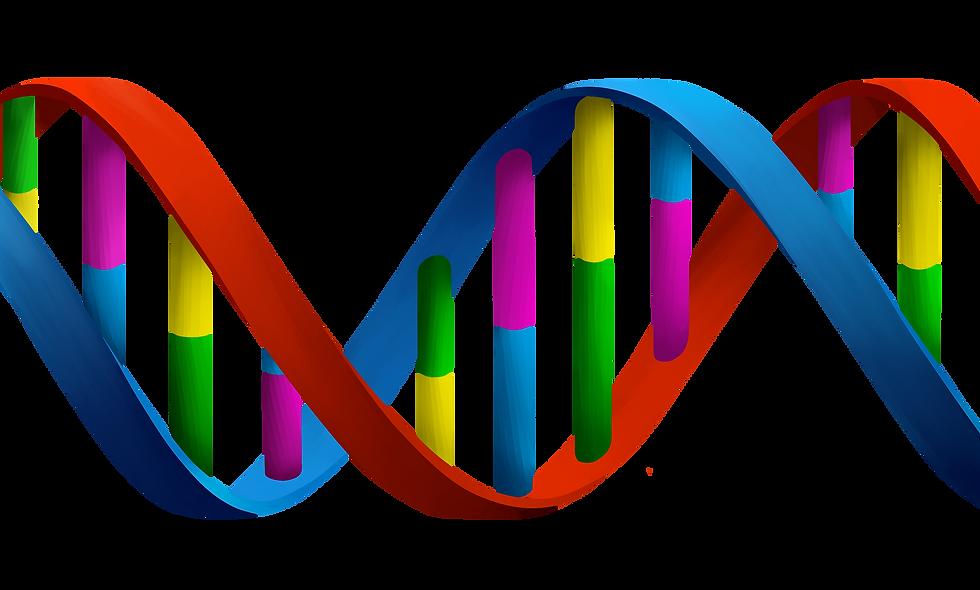 DNA. Testing