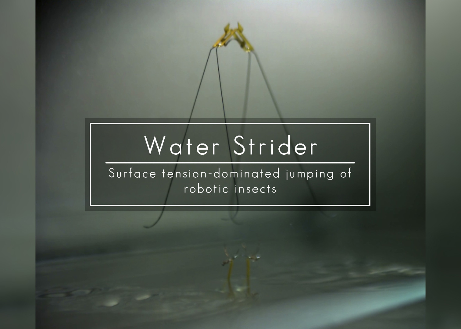 At scale robotic water strider.jpg