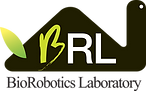 logo brl color.png