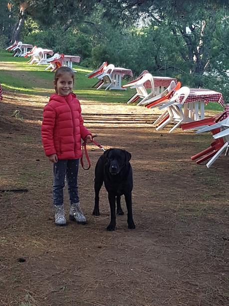 Koç Köpekler ve Dengede Çocuklar