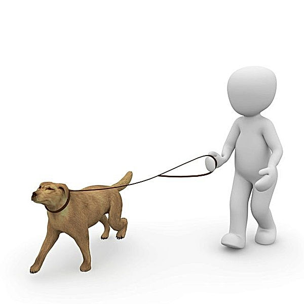dog-1015660_640.jpg