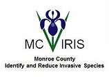 MC-IRIS.png
