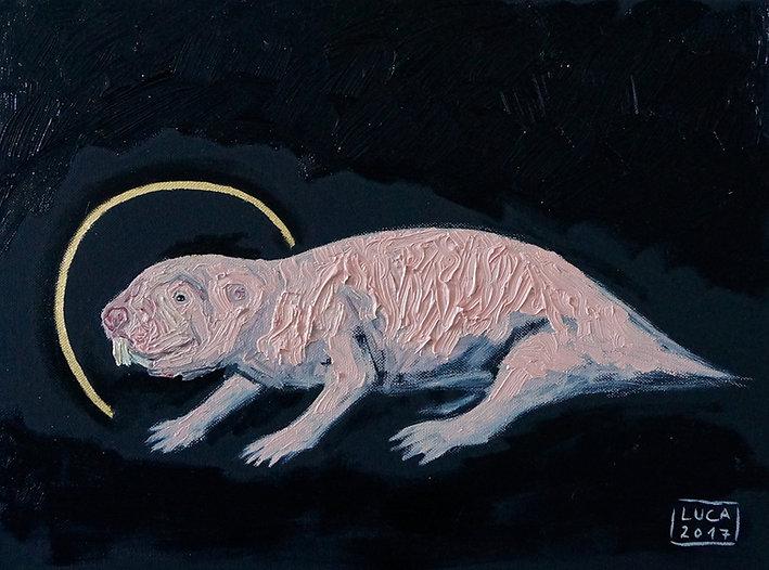 Der heilige Nacktmull, Heterocephalus Glaber, Tierporträt, Tiermalerin Ioana Luca