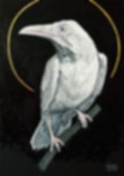 Ioana Luca, Tierporträts, Vogelporträts, Rabe, der heilige Albinorabe, Öl und Blattgold auf Leinwand, heilige Tiere, Tiermaler in Düsseldorf, Köln