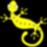 golden gecko package