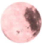 Screenshot 2018-11-15 at 14.49.27.png