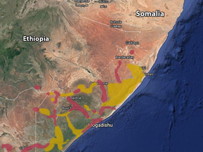 US Troop Withdrawal from Somalia May Lead to Destabilization of Country and al-Shabaab Power Gain