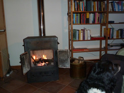 Woods stove