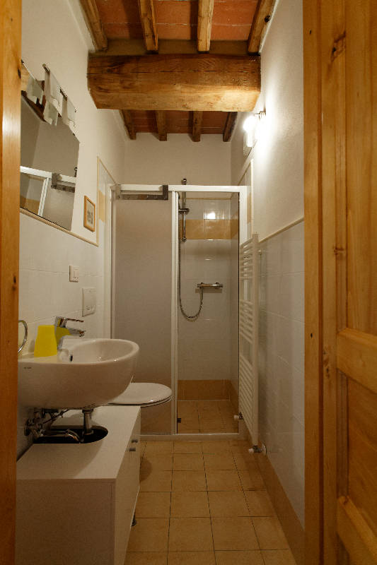 Bathroom downstairs