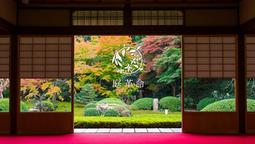 日本最大級の植木屋メディア『庭革命』に植木屋 中嶋が紹介されました!!