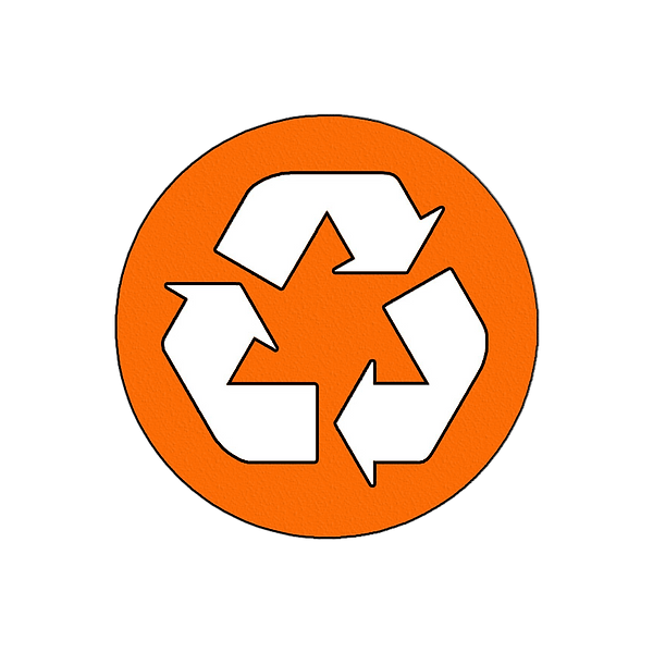 SO RECYCLE LOGO PNG.png
