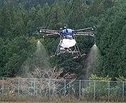 AIRTORO2001.jpg