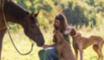 horse girl and dogs home pag.jpg