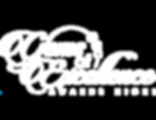 Gems ALL White Logo_No MADE.png
