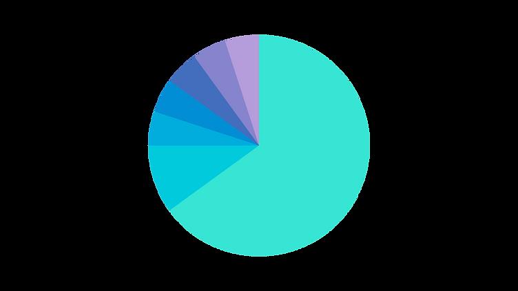 In dieser Grafik ist unser Krypto Portfolio 2020 dargestellt. Es zeigt die verschiedenen Anteile der Kryptowährungen und welche Coins für 2020 in unserem Portfolio sind.