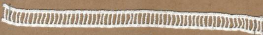DXR626 - Ponto palito 1,3 cm 100% poliéster