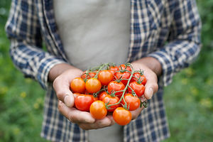 Foodshare & Community Fridge