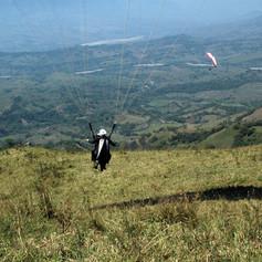 Cordoncillo4.jpg