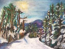 """""""A Winter Walk"""""""
