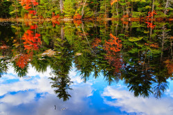 """Fall Reflections"""