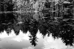 """Grey Reflections"""