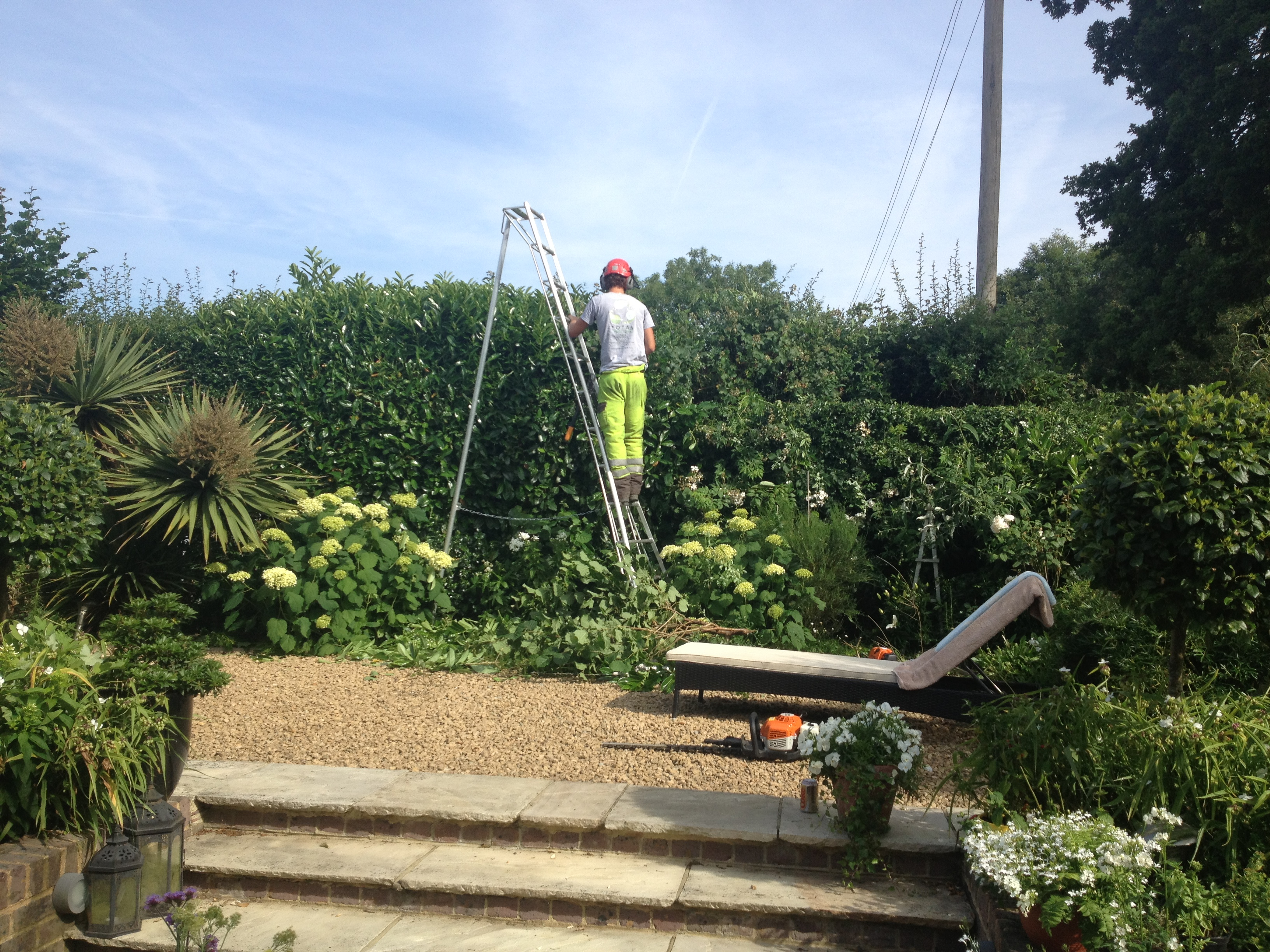 Mixed Hedge (Before)