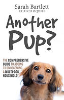 final another pup_(paperback).jpg