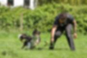 Craig-Ogilvie-Dog-Training-11.jpg