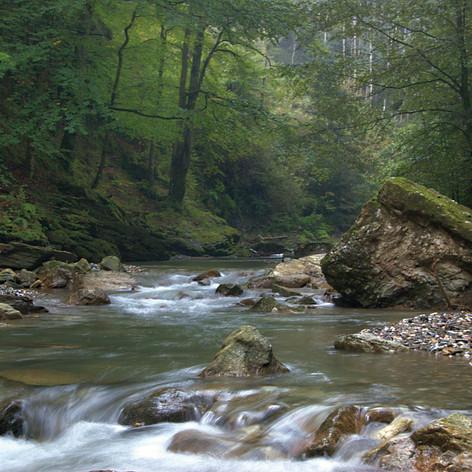 Flussverlauf.jpg
