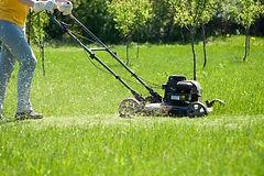 Mow a lawn.jpg