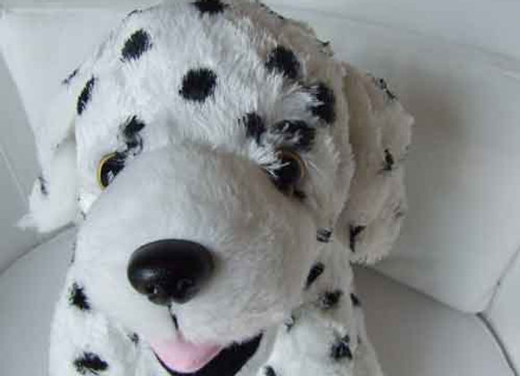 "16"" Dalmation Pup - Create a Cuddly"