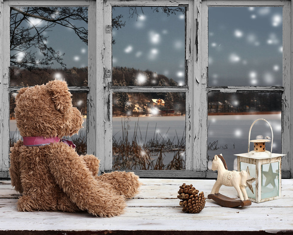 teddy bear and rocking horse looking at