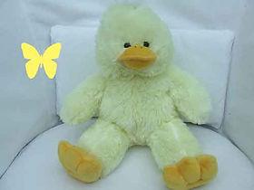 ducky - Copy.jpg