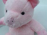 piggy 3.JPG