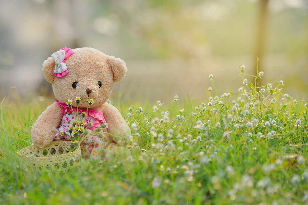 Teddy bear is collecting grass flowers i