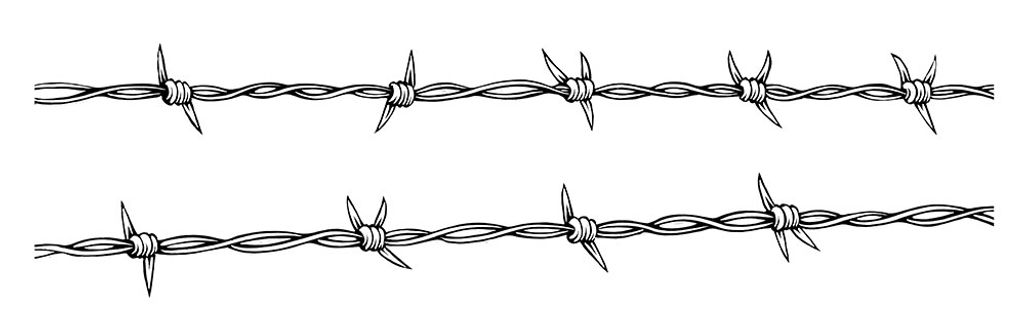 barbed_wire-compressed.jpg