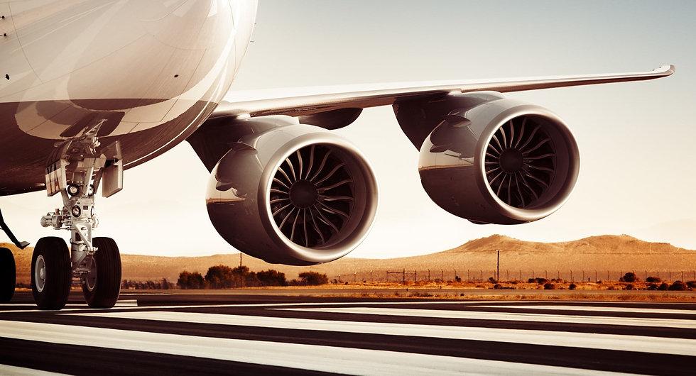 wingsss.jpg