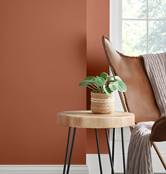Sherwin Williams Colour of the Year 2019- Cavern Clay