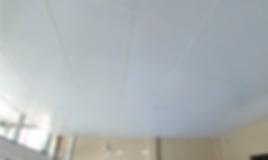 Drop Ceiling.png