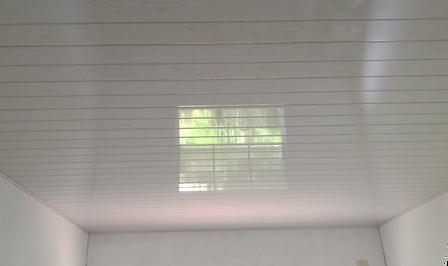 PVC Ceiling.png