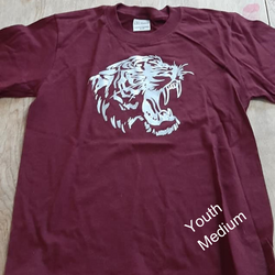 Youth SM Lion