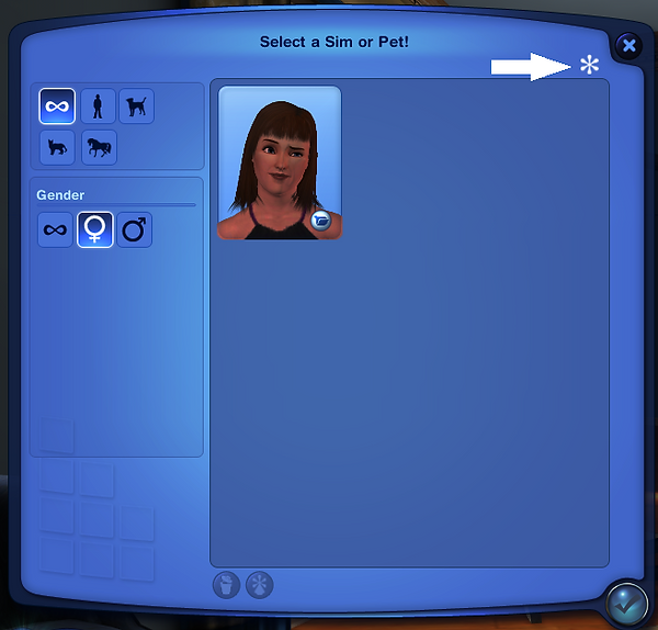 custom sim.png