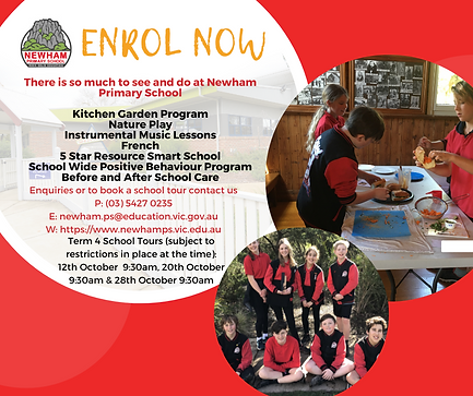 Enrol Now Flyer with Tour Dates.png